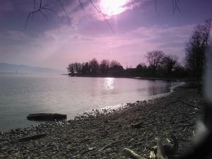 Bodensee im März